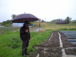 畑の状況を見に来た眞壁さん